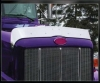 Peterbilt 300 Bug Deflector | Semi Truck Bug Deflector | 32 Chrome Shop Inc.